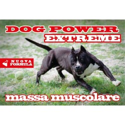 DOG POWER EXTREME