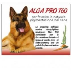 Alga Pro T 60